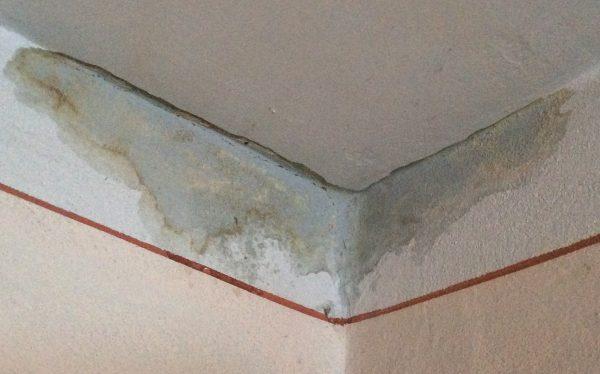 Влага на потолке